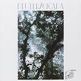 Cicada by Deuter (2001-02-01)