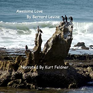 Awesome Love Audiobook
