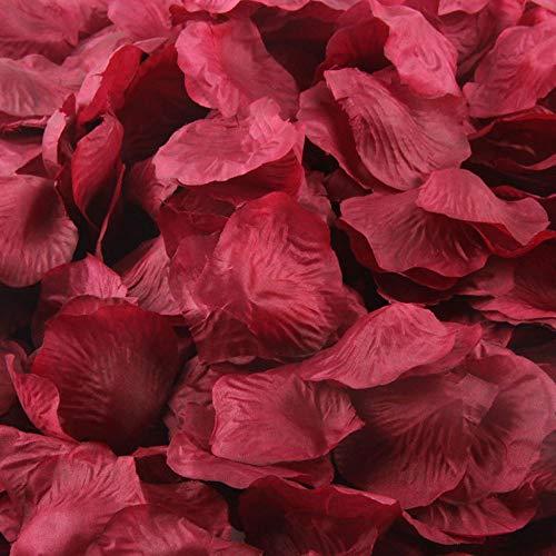 Quaanti 1000pcs Multicolor Silk Rose Petals Artificial Flower Petals for Wedding Confetti Flower Girl Bridal Shower Hotel Home Party Valentine Day Flower Decoration (F) from Quaanti