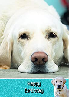Golden Labrador Dog Birthday Card 8x55 Mix Match On
