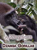 A Kingdom For The Dzanga Gorillas