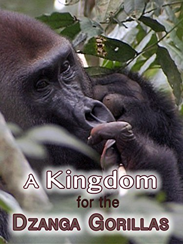A Kingdom For The Dzanga Gorillas