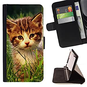King Air - Premium PU Leather Wallet Case with Card Slots, Cash Compartment and Detachable Wrist Strap FOR Sony Xperia m55w Z3 Compact Mini- Cat Cute Kitty