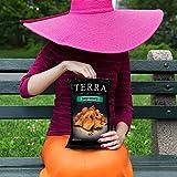 Terra Sweet Potato Vegetable Chips, No Salt