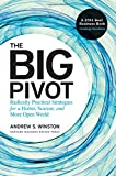 The Big Pivot: Radically Practical Strategies for a Hotter, Scarcer, and More Open World