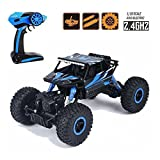 BeatlesStore(Blue) RC Car 2.4G 4CH 4WD Rock Crawlers 4x4 Driving Car Double ...