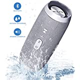 MISPO Wireless Bluetooth Speaker with microphone, Outdoor Portable bass bluetooth speakers with HD Audio and Enhanced Bass 6W,Hands-Free Calling,TF Card Slot,Grey
