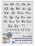 neon chart paper - Pacon Colored Paper Chart Tablet, 24