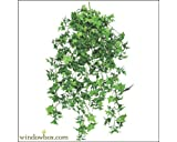 30 Inch Artificial English Ivy Outdoor Rated