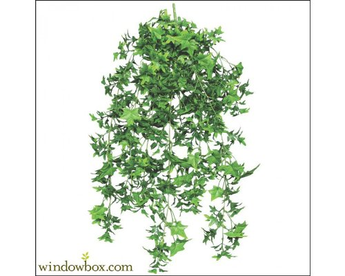 Ivy Cascading Silk Plant - 30 Inch Artificial English Ivy Outdoor Rated