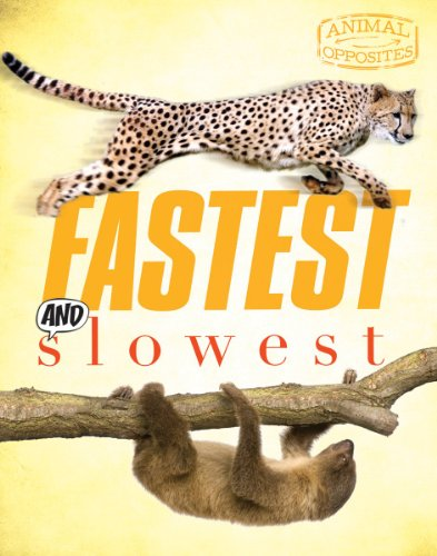 Fastest and Slowest (Animal Opposites) ()