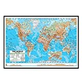 World Advanced Physical Mounted Framed Wall Map Frame Color: Black