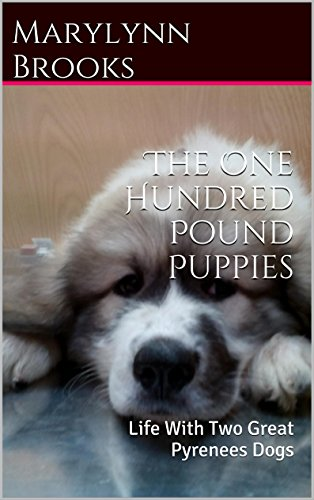 the-one-hundred-pound-puppies-life-with-two-great-pyrenees-dogs