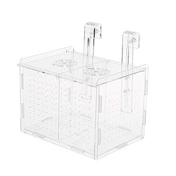 FLAMEER Aislante Caja Transparente Acuario Peces Accesorios Herramineta Fácil Instalación de Pecera Elegante: Amazon.es: Productos para mascotas