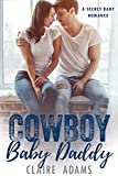 img - for Cowboy Baby Daddy (A Secret Baby Romance Compilation) book / textbook / text book