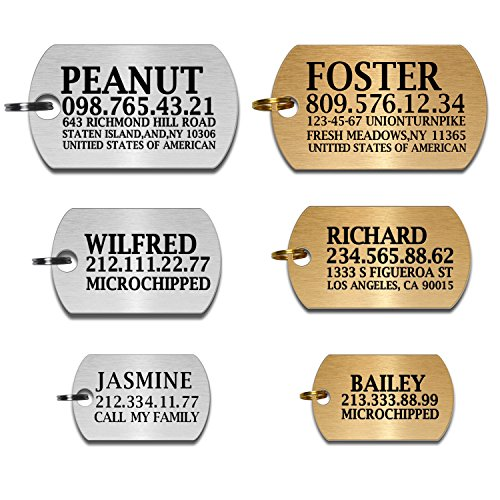 Homemade Dog Lion Costumes (Custom Dog Tags Pet Id Tags for Small / Large Breed Dog Name Engraved Plates Double Sides Engraved- Stainless Steel Silver, Gold (Steel-silver, Military Tag))