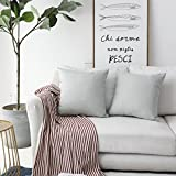 HOME BRILLIANT Burlap Lined Linen Decorative Pillow Covers Rustic Cushion Covers for Couch, 2 Pack, 18x18 inch(45x45cm), Light Grey