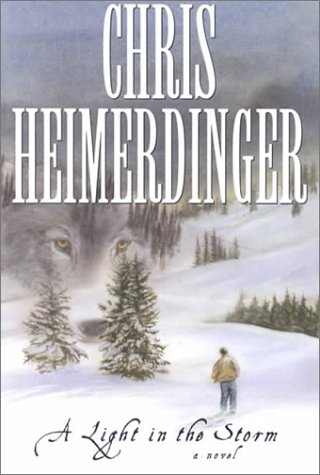 Read Online A Light in the Storm: A Novel ebook