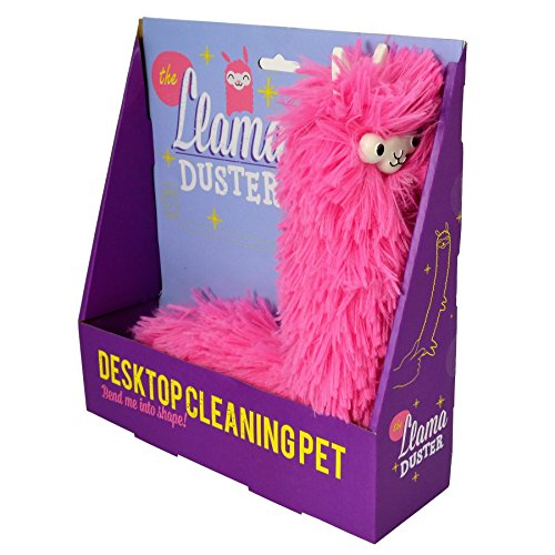 Best Feather Dusters