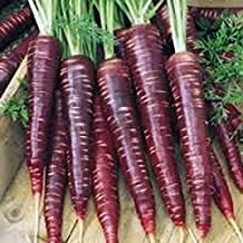 CARROT, PURPLE HAZE, HYBRID, ORGANIC 25 SEEDS, UNUSUAL DELICIOUS AND SWEET