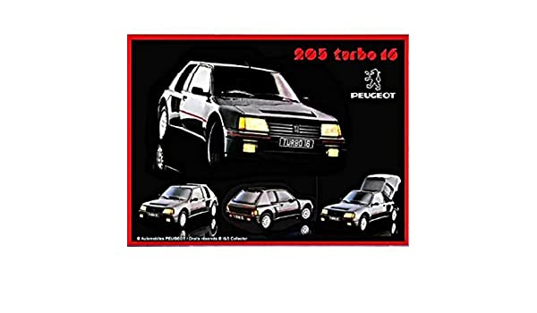 Placa Metalica Retro Coche FRANCIA VINTAGE PLACA METAL 20x15cm Peugeot sport rally 205 turbo 16: Amazon.es: Hogar