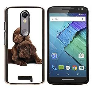EJOOY---Cubierta de la caja de protección para la piel dura ** Motorola Moto X3 3rd Generation ** --Los cachorros labrador retriever del chocolate