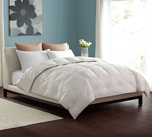 Top Best 5 King Light Weight Down Comforter For Sale 2016