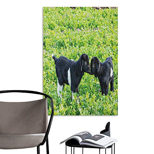 (Brandosn Wall Mural Wallpaper Stickers Animal Baby Sheep with Nature Hills Garden Flowers Lavenders Grass Image Apple Green Fern Green Black Rental House Wall W16 x)