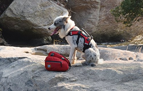 Fosinz Outdoor Comfortable Reflective Backpack and Harness Good for Hiking Walking (L)