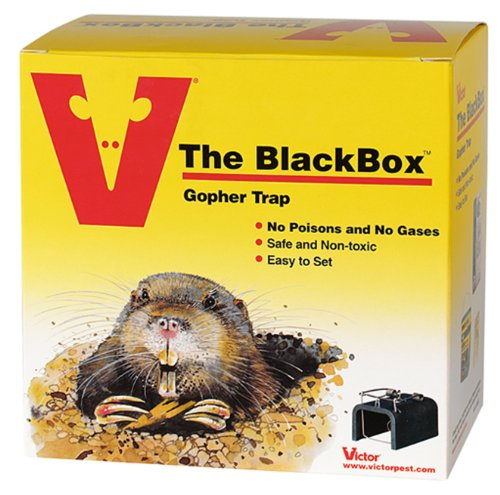 victor-the-black-box-gopher-trap-0625