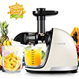 AMZCHEF Juicer, Slow Masticating Juicer Extractor Professional Cold Press Juicer Machine with Quiet