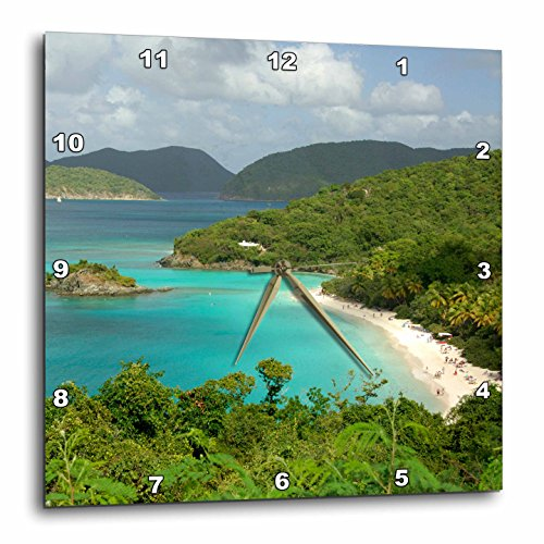 3dRose dpp_70005_1 Usvi, St. John, Trunk Bay, Virgin Islands Np-Ca37 Cmi0147-Cindy Miller Hopkins-Wall Clock, 10 by 10-Inch -