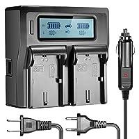 Neewer Dual LCD Cargador de batería para baterías Canon LP-E6 Compatible con Canon 7D 6D 5D II III 5Ds R 70D 60D 6D a 80D (enchufe de EE. UU. + Enchufe de la UE + adaptador de cargador de automóvil)