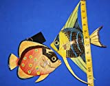 Salty Pelican Under The Sea Childrens Bathroom Wall Decor, Moisture Resistant 3-D Poly-resin 8 inch Fish Bundle of 2 ITems