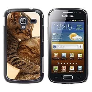 Qstar Arte & diseño plástico duro Fundas Cover Cubre Hard Case Cover para Samsung Galaxy Ace 2 I8160 / Ace2 II XS7560M ( Cute Baby Kitten Cat Mother Furry)