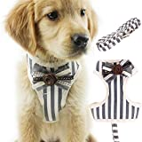 QBLEEV Dog Harness Vest Tie Double-deck Net Cloth Metal Fastener Walking Leash Set Leads Adjustable Breathable Fashion Small Medium Puppies Cat 2 in 1(dog chest harness+leash) (S - Grey)