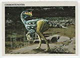 Chirostenotes - Dinosaurs: The Mesozoic Era (Trading Card) # 23 - Redstone Marketing 1993 Mint