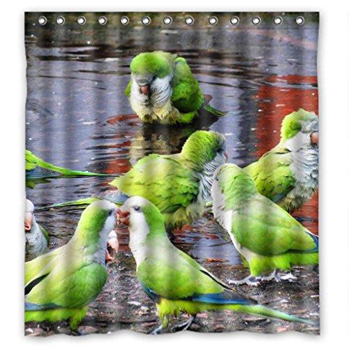 """Unique green parakeet budgie parrots Shower Curtain Measure 66""""(w)x72""""(h)"""
