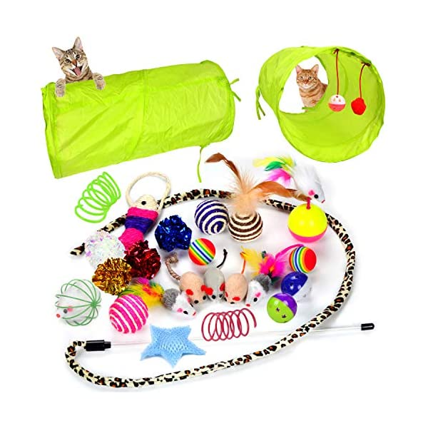 Youngever 24 Cat Toys Kitten Toys Assortments, 2 Way Tunnel, Cat Feather Teaser – Wand Interactive Feather Toy Fluffy…