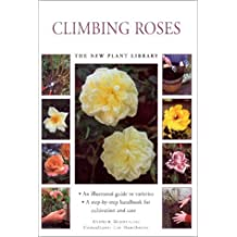 Little Plant Library:  Climbing Roses