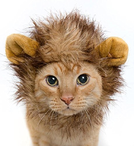 Lion Mane Dog Cat Costume and Complimentary Feathered Catnip Toy - Dog and Cat Costumes by Pet (Cats Costume)