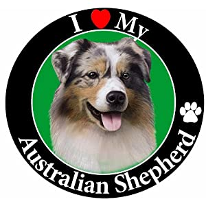 """""""I Love My Australian Shepherd"""" Car Magnet With Realistic Looking Australian Shepherd Photograph In The Center Covered In UV Gloss For Weather and Fading Protection Circle Shaped Magnet Measures 5.25 Inches Diameter 29"""