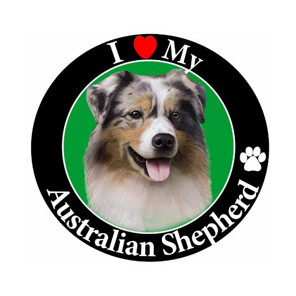 """I Love My Australian Shepherd"" Car Magnet With Realistic Looking Australian Shepherd Photograph In The Center Covered In UV Gloss For Weather and Fading Protection Circle Shaped Magnet Measures 5.25 Inches Diameter 1"