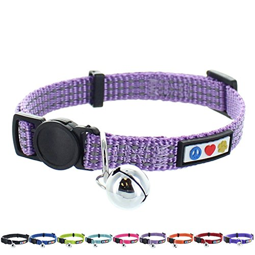 Pawtitas Reflective Cat Collar with Safety Buckle and Removable Bell Cat Collar Kitten Collar Orchid Purple Cat Collar