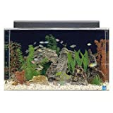 SeaClear 29 gal Show Acrylic Aquarium Combo Set, 30 by 12 by 18'', Black