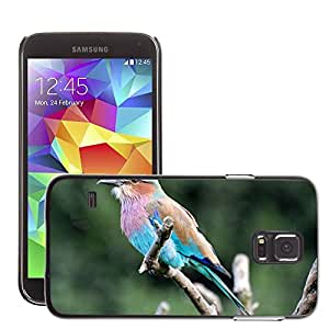 Etui Housse Coque de Protection Cover Rigide pour // M00117396 Lila Breasted Pájaro Roller // Samsung Galaxy S5 S V SV i9600 (Not Fits S5 ACTIVE)