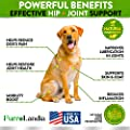 FurroLandia Hemp Hip & Joint Supplement for Dogs - 170 Soft Chews - Made in USA - Glucosamine for Dogs - Chondroitin - MSM - Turmeric - Hemp Seed Oil - Natural Pain Relief & Mobility