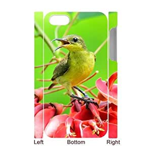 For Ipod Touch 5 Case Cover Bird 3D Art Print Design Phone Back Case Custom Hard Shell Protection AQ074591