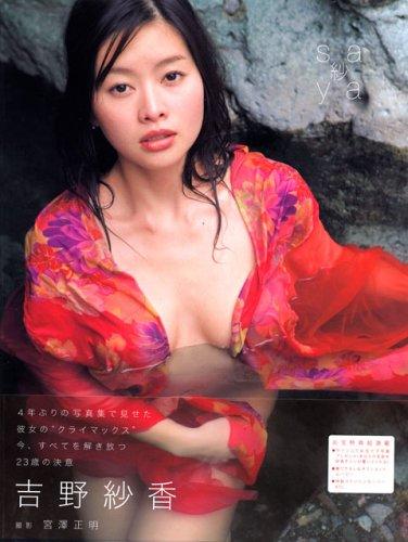 グラビアアイドル Eカップ 吉野紗香 Yoshino Sayaka 作品集