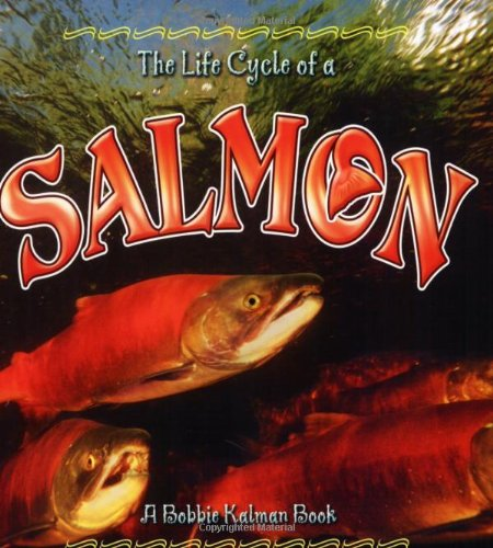 Salmon (Life Cycle of A...(Paperback))